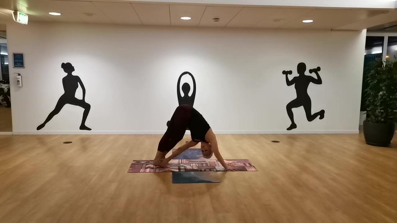 Yoga Video 22