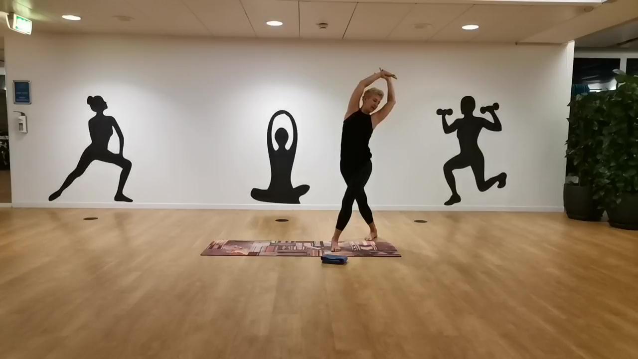 Yoga Video 25